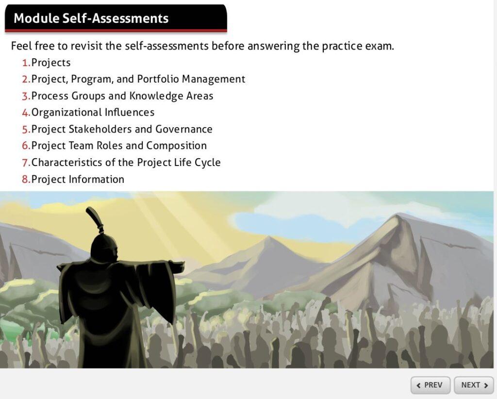 module self-assessments