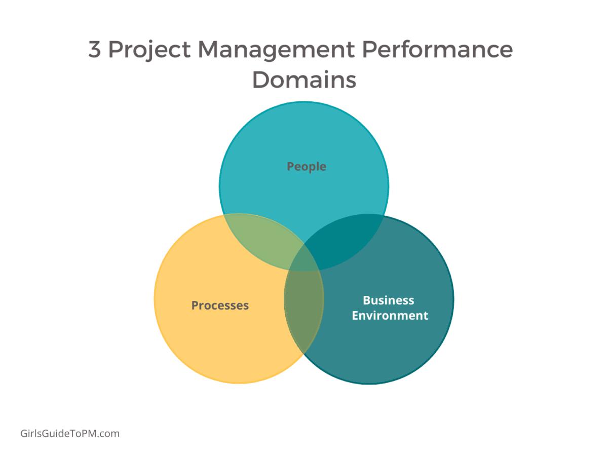 project management performance domains